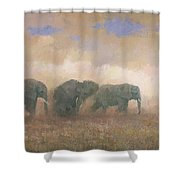 Dust Riders Shower Curtain