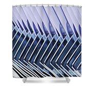 Dustpans 2 Shower Curtain