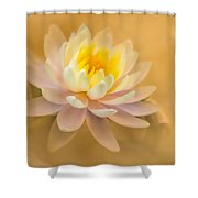 Dusty Elegance  Shower Curtain