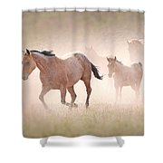 Dusty Emergence 002 Shower Curtain