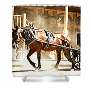 Dusty Horse Shower Curtain