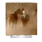 Dusty Roundup Shower Curtain