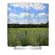 Dutch Blue Shower Curtain
