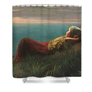 Dutch  Dreams  Shower Curtain