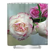 Dutch Frilled Roses Shower Curtain
