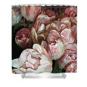 Dutch Tulips Dutch Tile Shower Curtain