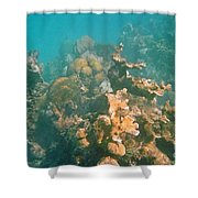 Dying Coral Shower Curtain