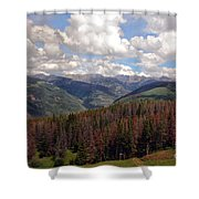 Dying Evergreens Shower Curtain