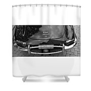 E-type Shower Curtain