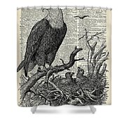 Eagle And Its Nest  Shower Curtain