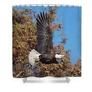 Eagle Banking Shower Curtain