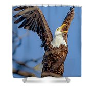 Eagle Excitement Shower Curtain
