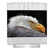 Eagle Eye Shower Curtain