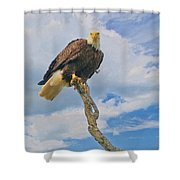 Eagle Eyes Shower Curtain