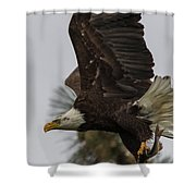 Eagle In Flight With Fish Shower Curtain