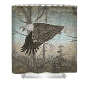 Eagle  In Forest Shower Curtain