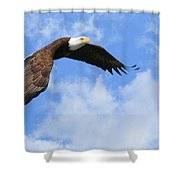 Eagle In The Clouds Shower Curtain