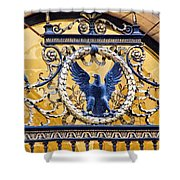 Eagle In The Middle Shower Curtain