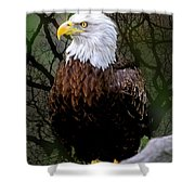 Eagle In The Night Shower Curtain