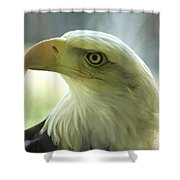 Eagle Majesty Shower Curtain