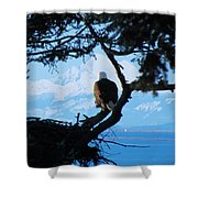 Eagle - Mt Baker - Eagles Nest Shower Curtain