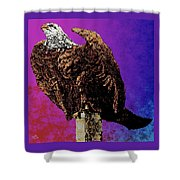 Eagle Of Wwi Shower Curtain