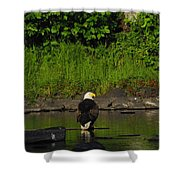 Eagle On River Rock II Shower Curtain