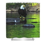 Eagle On River Rock IIi Shower Curtain