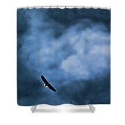 Eagle Over River And Shiloh Shower Curtain