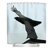 Eagle Park Shower Curtain