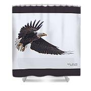 Eagle Pausing Shower Curtain