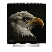 Eagle Profile 3 Shower Curtain