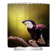 Eagle Ready For Take Off Shower Curtain