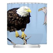 Eagle Reflection Shower Curtain
