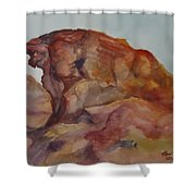Eagle Rock In Valley Of Fire Shower Curtain