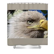 Eagle Wise Shower Curtain