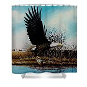 Eagle With Decoy Shower Curtain