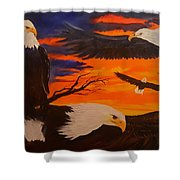Eagles Are Back                 76 Shower Curtain
