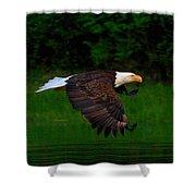 Eagle's Grace Shower Curtain