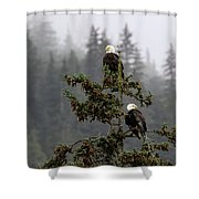 Eagles On Watch 1 Shower Curtain