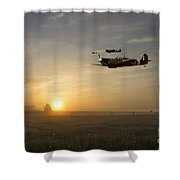 Eagles Rising Shower Curtain