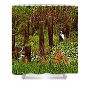 Egret And Heron Shower Curtain