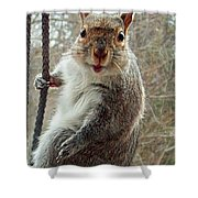 Earl The Squirrel Shower Curtain