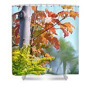 Early Autumn Shower Curtain