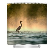 Early Bird Shower Curtain