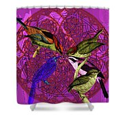 Early Bird Solar Energy Shower Curtain by Joseph Mosley