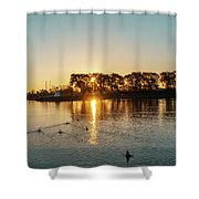 Early Birds In Teal And Orange Shower Curtain