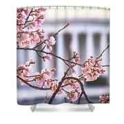 Early Bloom Shower Curtain