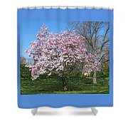 Early Blooms Shower Curtain