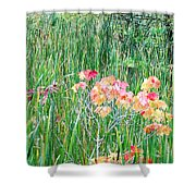 Early Fall Color Shower Curtain